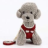 LZMXXQ Hundeleinen Haustier einziehbarer Brustgurt Teddybär kleine Hundeleine Hund niedlich Weste Hund Kette Heimtierbedarf (Farbe : A, größe : L)