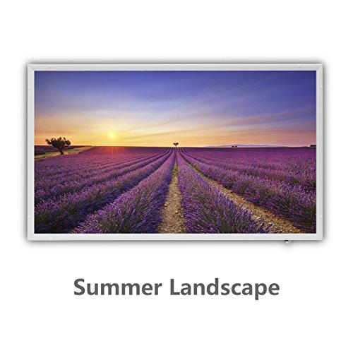 Protron Motiv Infrarotheizung Infrarot Panel Heizkörper Bild Elektroheizung Wandheizung 600Watt 102x63cm Summer Landscape 600w