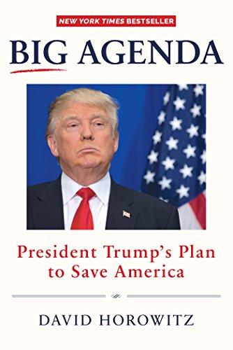 Big Agenda: President Trump's Plan to Save America (Big Agenda)