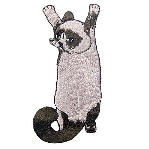 Kostüm Katze Coole - ZEGIN Aufnäher, Bestickt, Design: Nette kletternde Katze, zum Aufbügeln oder Aufnähen