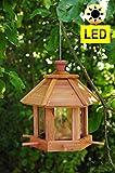 Vogelhaus,großes Holz-Vogelhäuschen, PREMIUM ZEDER wetterfest,mit Silo + LED-Licht, Nistkasten Vöglehus Vogelvilla Futterkasten + 6x Futterstation