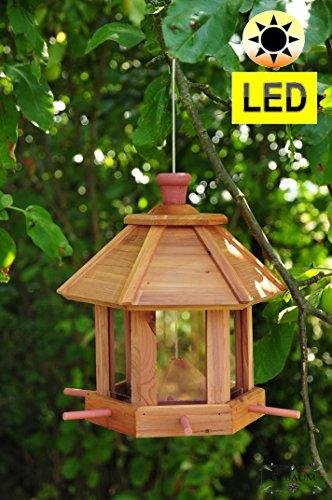 Per uccello fodera casa, voliera, fodera station, con/senza illuminazione giardino con 6x fodera dosatore e Silo nido per uccellini, colore: marrone chiaro, casette per uccelli per uccello fodera casa, voliera, fodera station + casetta per uccelli