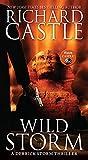 Wild Storm: A Derrick Storm Thriller 02