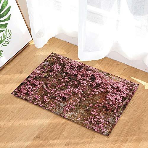 FEIYANG Rosa Frühlingsblumen auf rotem Backstein-Wand-Dekor-Badteppichen Rutschfeste Fußmatte Bodeneingänge Inneneingangstürmatte Kinder Badmatte 50x80cm (Rosa Und Grüne-wand-dekor)