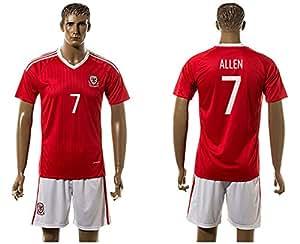 2016UEFA Euro Cup Wales 7Joe Allen Home Football Jersey in Rot