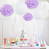 GEARKING 12 pcs Tissue Paper Flower Pom-Poms White Pom Tissue Paper Pom Pom Honeycomb Ball Paper Lantern Bridal Shower Decoration Pink Party Centerpiece Baby Showers by GEARKING