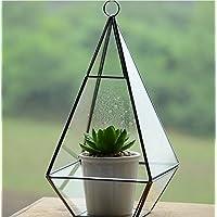 12x12x23.7cm Ultra Premium qualità Glass Terrarium triangolo con il cerchio e un bordo di taglio perfetto per Moss e piante o decorazioni (12x12x23.7cm)
