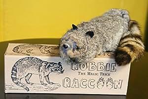 Robbie le raccoon + DVD