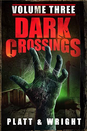 Dark Crossings: Volume 3 (English Edition)