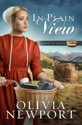 In Plain View (Valley of Choice, Band 2)