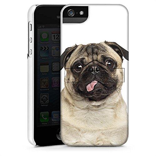 Apple iPhone 5 Housse Outdoor Étui militaire Coque Carlin Chiot Chien CasStandup blanc