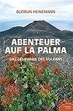 Abenteuer auf La Palma: Das Geheimnis des Vulkans (R.G. Fischer Teenie)