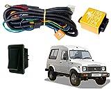 Best Kits Wiring Harness - Auto Pearl - Phoenix HeadLamp High Power 100/90W Review