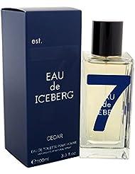 Iceberg ceder Homme/Men, eau de toilette, vaporisateur/Spray, 100ml