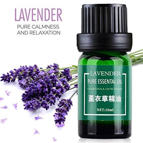 Aceites esenciales, diadia CZLMI; aceites esenciales puros naturales de aromaterapia esencial de 10 ml de fragancia de aroma, regalos para familia o amigos