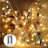Lichterkette Warmweiß 50 led Globe Lichterkette Party 8 Modi mit Fernbedienung 5,5M Kugel Lichterkette Batterien IP44 Deko Glühbirne für Biergarten Hochzeit Weihnachten Bar