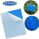 10 Stück Beidseitig Blautafeln Sehr effiziente...