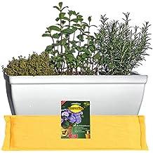 Lot économique : Jardinière De Balcon Soucoupe Inclusive Jardinière De  Fenêtre Et FlowerPad Système De Drainage Professionnel Résistant Au Gel 48  X 19 X H ...
