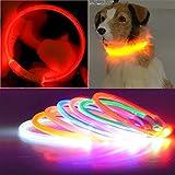 LED HUND KATZE HALSBAND, USB Wiederaufladbares, wasserdichtes LED Hund Nacht Sicherheit Halsband Blinklicht bis, Glowing verstellbar Pet Halskette Halsband für kleine mittlere Große Hunde (Pink)