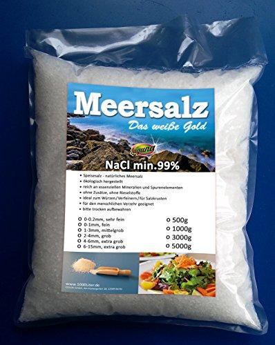 Gros sel de mer Grob - 1000 l - Pour la cuisine, moulin à sel - Sel XXL - Sélection de grains de tailles et quantités variées, Sac de recharge de 5 000 g, 0 - 0,2 mm