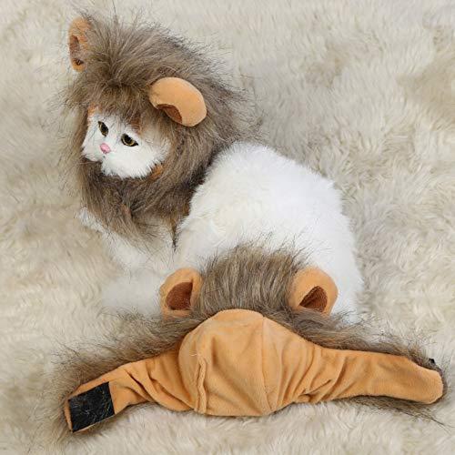 Dcola Kostüm Löwenmähne für Hunde und Katzen, Dieses Haustierkostüm verwandelt Ihre Katze oder Kleine Hunde in einen Wilden König der Löwen. (König Der Löwen Kostüm Für Hunde)