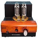Little Dot LD III SE Telefunken EL152 Tube Headphone Amplifier Power Amplifier
