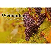 Weinanbau. Von der Traube zum Wein (Wandkalender 2017 DIN A2 quer): Schöne Impressionen vom interessanten Weinbau (Geburtstagskalender, 14 Seiten ) (CALVENDO Natur)