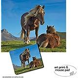 Set Regalo: 1 Póster Impresión Artística (50x40 cm) + 1 Alfombrilla Para Ratón (23x19 cm) - Caballos, Ponis Pottoka En El Pais Vasco