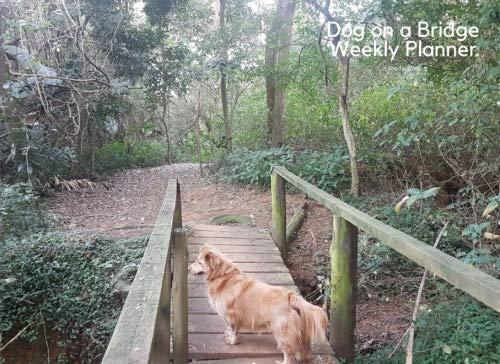 Dog On A Bridge Weekly Planner (Landscape): 8.25