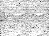 Fototapete Klinkersteine Grau 350cm Breit x 260cm Hoch Vlies Tapete Wandtapete - Tapete - Moderne Wanddeko - Wandbilder - Fotogeschenke - Wand Dekoration wandmotiv24