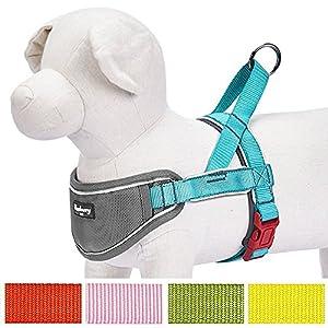 Blueberry Pet bandes 3M Réfléchissantes, solide, Néoprène, Rembourré Anti-traction Réglable Harnais de dressage pour chien