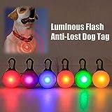 AOLVO LED-Anhänger für Hunde und Katzen, leuchtet im Dunkeln, 6 Stück, Regenbogenfarben