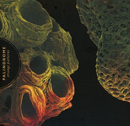 Palindrome: Strange Patterns (Audio CD)