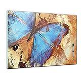 Memoboard 80 x 60 cm, Tiere - Schmetterling - Memotafel Pinnwand - Tiermotive - Tierbild - Tier - Falter - Insekt - Raupe - bunter Schmetterling - Flügel - Natur - Küche - Glasbild - Handmade