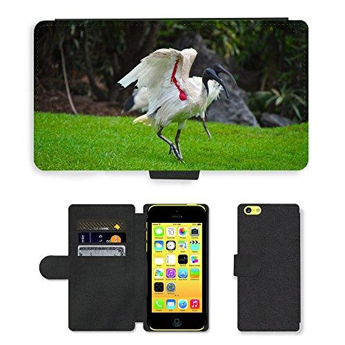 Just Mobile pour Hot Style Téléphone portable étui portefeuille en cuir PU avec fente pour carte//m00139515Oiseaux Wildlife Australien Ibis en plumes//Apple iPhone 5C