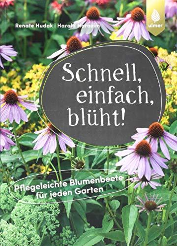 Schnell, einfach, blüht: Pflegeleichte Blumenbeete für jeden Garten