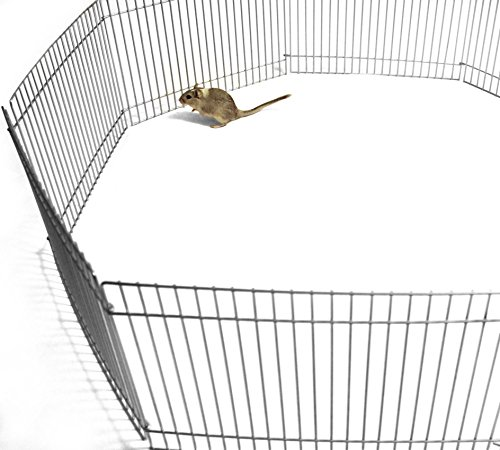 Easipet Small Pet Metal Play Pen or Run suitable for Guinea Pig Hamster Gerbil Mouse (1)