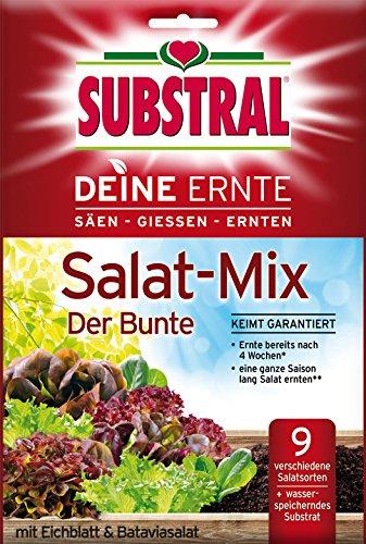substral-deine-ernte-salat-mix-der-bunte-8769-250-g