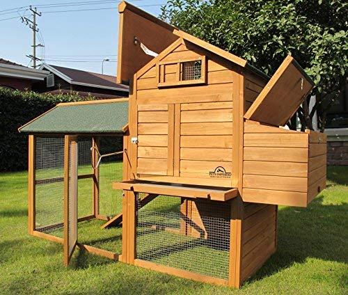 Pets Imperial® - groß Hühnerstall Kaiserbourne - 2 bis 4 Hühner je nach Größe - innovative Verriegelung - 2