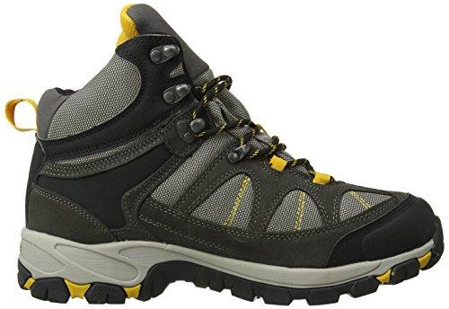 Hi-Tec Altitude Lite I Wp, Randonnée Hautes Homme Gris (Charcoal/Grey/Lichen)