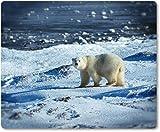Mauspad / Mouse Pad aus Textil mit Rückseite aus Kautschuk rutschfest für alle Maustypen Motiv: Eisbär in der Arktis [08]