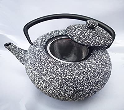 en fonte de style japonais Gris clouté Théière bouilloire 1.3l bouilloire avec filtre