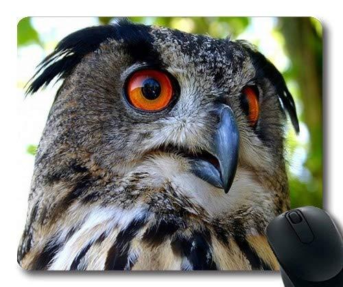 Mausmatte, Eule Brillen Eule Vogel, Mauspad mit genähten Kanten