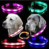 Hunde Leuchthalsband LED Blinkhalsband Hundehalsband Blinki Leuchtschlauch , Farben:Blau