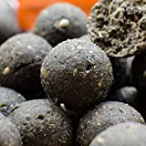Karpfenangeln Boilie Deals 5 kg & 10 kg Bulk Boilies 15 mm + kostenloser Dips & Pop-up Halibut Coconut 15mm 10 kg