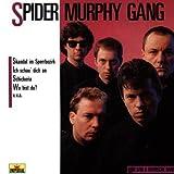 Songtexte von Spider Murphy Gang - Mir san a bayrische Band