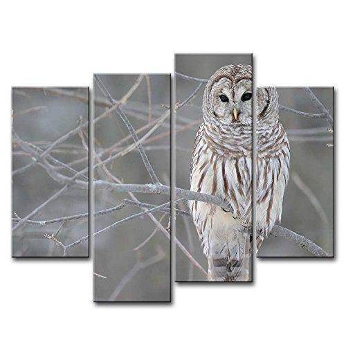 Bild weiß Eule im Baum Prints auf Leinwand Das Tier Bilder Öl für Home Moderne Dekoration Print Decor (Halloween Crazy Hair Day)