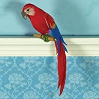 The Dolls House Emporium Timothy the Macaw Parrot