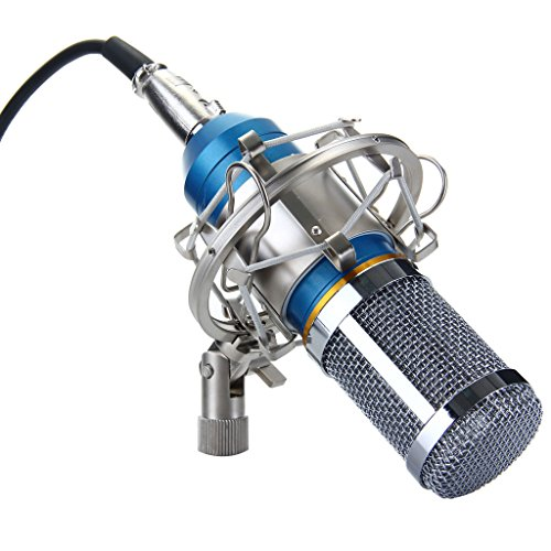 Generic-57000928MG-Silica-Gel-Professional-Condenser-Microphone-Mic-Sound-Studio-Recording-Dynamic-Requires-phantom-power