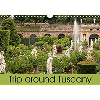 Trip to Tuscany (Wall Calendar 2020 DIN A4 Landscape): From Pisa and Lucca to Florence (Monthly calendar, 14 pages ) (Calvendo Places)